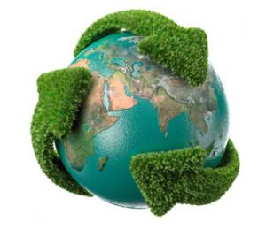 imagem ilustrativa do meio ambiente